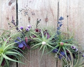air plant wreath // plum  //  tillandsia by robincharlotte