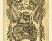 Oriental Natural History - Original Etching - monkey print