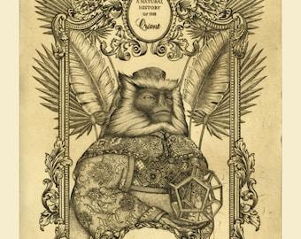 Fine art etching - Oriental Natural History - Original Etching - monkey print