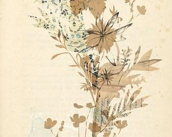 Voice of Nature no.2 Wall Art Print botanicalillustration