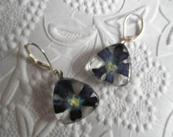 Blue Verbena Pressed Flower Glass Triangle Leverback Earrings-Nature's Wearable Art-Symbolizes Enchantment, Pray For Me