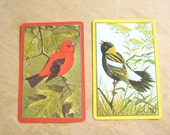 Bird Illustration Playing Cards, Two Designs, Five of each - Vintage Bird Picture Playing Card - Red Bird - Yellow Bird