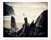 Drift Ashore - Nature Photography - Beach Photograph - Ocean Landscape Art Print - Monochromatic Fine Art - Oregon Coast Photo