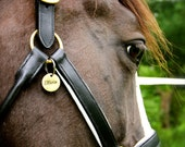 Custom Equestrian Halter Tag / Bridle Tag in Hand Stamped Brass - Perfect Gift for Horse Lovers
