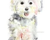 "Maltese Painting, Dog Art Print, Print of Dog Watercolor painting, Giclee Print, Watercolor Dog, dog print - ""Maltese Sweet Pup""  8x10"