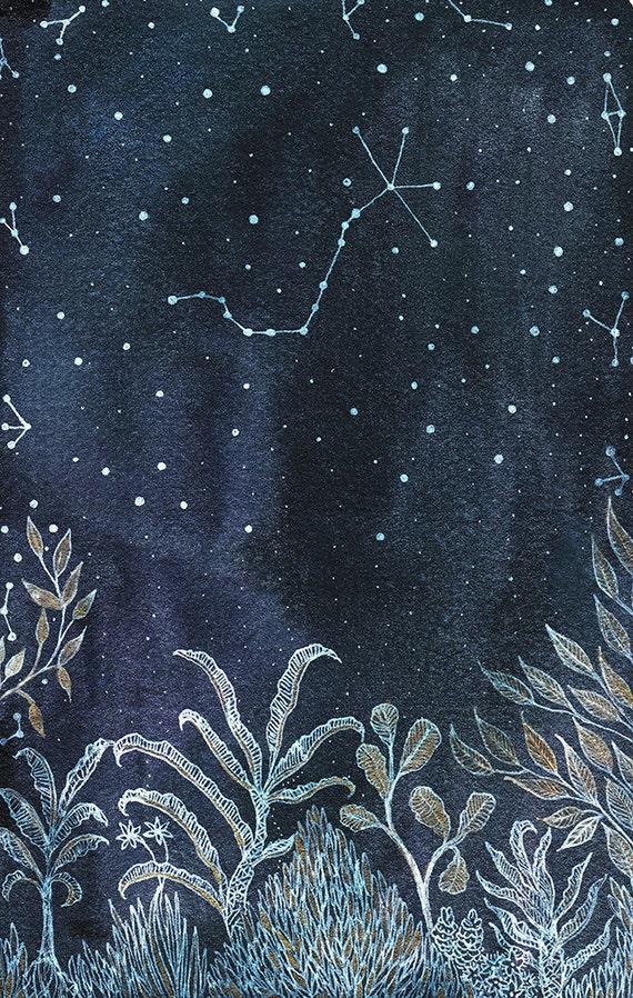 Fine Art Print- Midnight Jungle & scorpio constellation