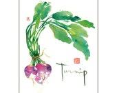 Kitchen art, Watercolor turnip painting, Vegetable print, Green kitchen decor, Botanical art, 8X10 food poster, Veggie art, Kitchen print
