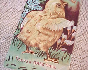 Charming Edwardian Era Chick Postcard with Pretty Woodland Colors