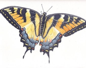Monarch, mixed media, pastel, permanent marker, 9x12 original ooak, butterflies, earthspalette