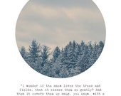 Snowy Pine Trees Photograph | Alice in Wonderland Through the Looking Glass Quote Lewis Carroll | Snow Winter Circle | Till Summer Comes