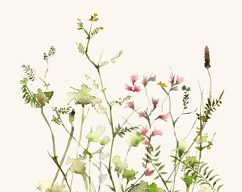 Watercolor Art Original Wild Flower Meadow