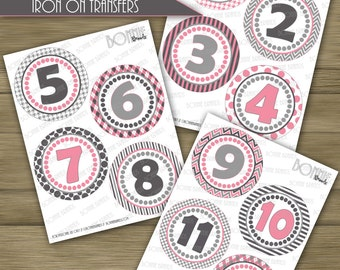 PRINTABLE DIY Monthly Baby Stickers or Iron On Transfers //  Baby Milestone // Baby Girl // Pink, Gray // 12 unique patterns