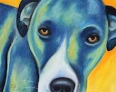 Blue Dog Pastel Drawing 8x10 Print 11x14 unmatted Colorful Animal Art Pit Bull drawing pop art Painting Custom Dog Portrait Animal Ar Print