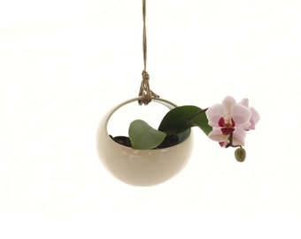 Modern Hanging Planter- Great for Orchids