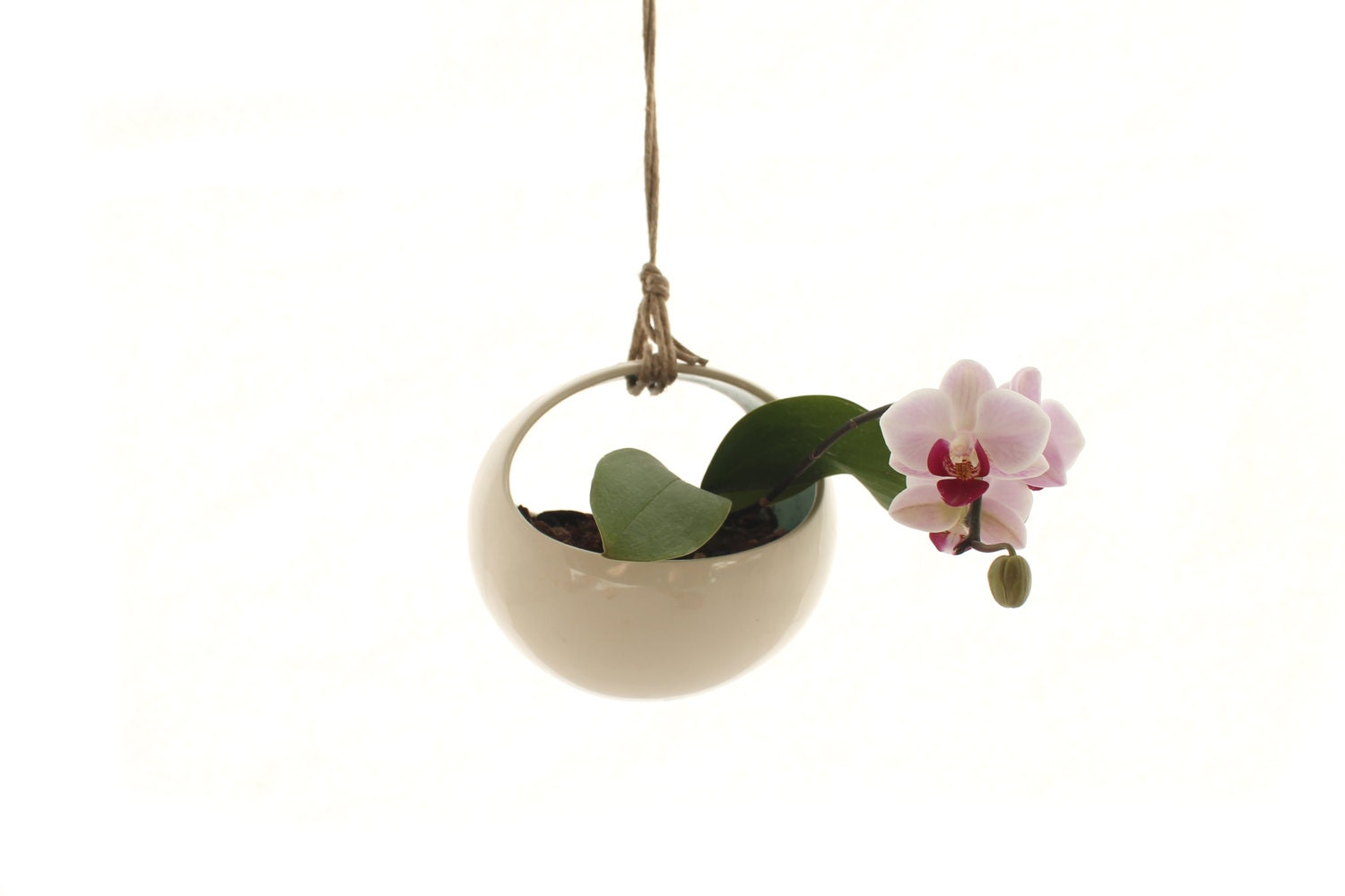 Modern Hanging Planter Great for Orchids by LandMstudio on Etsy