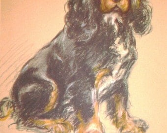 Spaniel Tantivy VINTAGE SIGNED MOUNTED 1946 Lucy Dawson Mac dog plate print Unique gift
