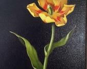oil painting botanical still life Yellow Tulip, Dutch still life