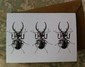 Greetings Card // Stag Beetle Fine Art Drawing - Blank, 105 x 148mm