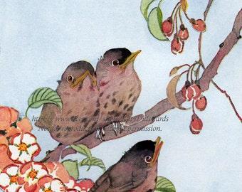 Baby Robins Fabric Block Flowering Tree Janet Laura Scott Repro