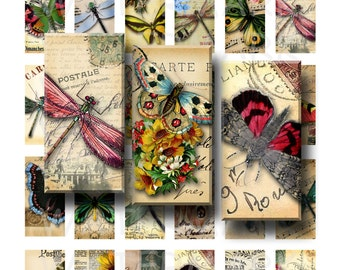 Butterflies and Dragonflies - Digital Collage Sheet - 1 x 2 inch Domino - INSTANT DOWNLOAD