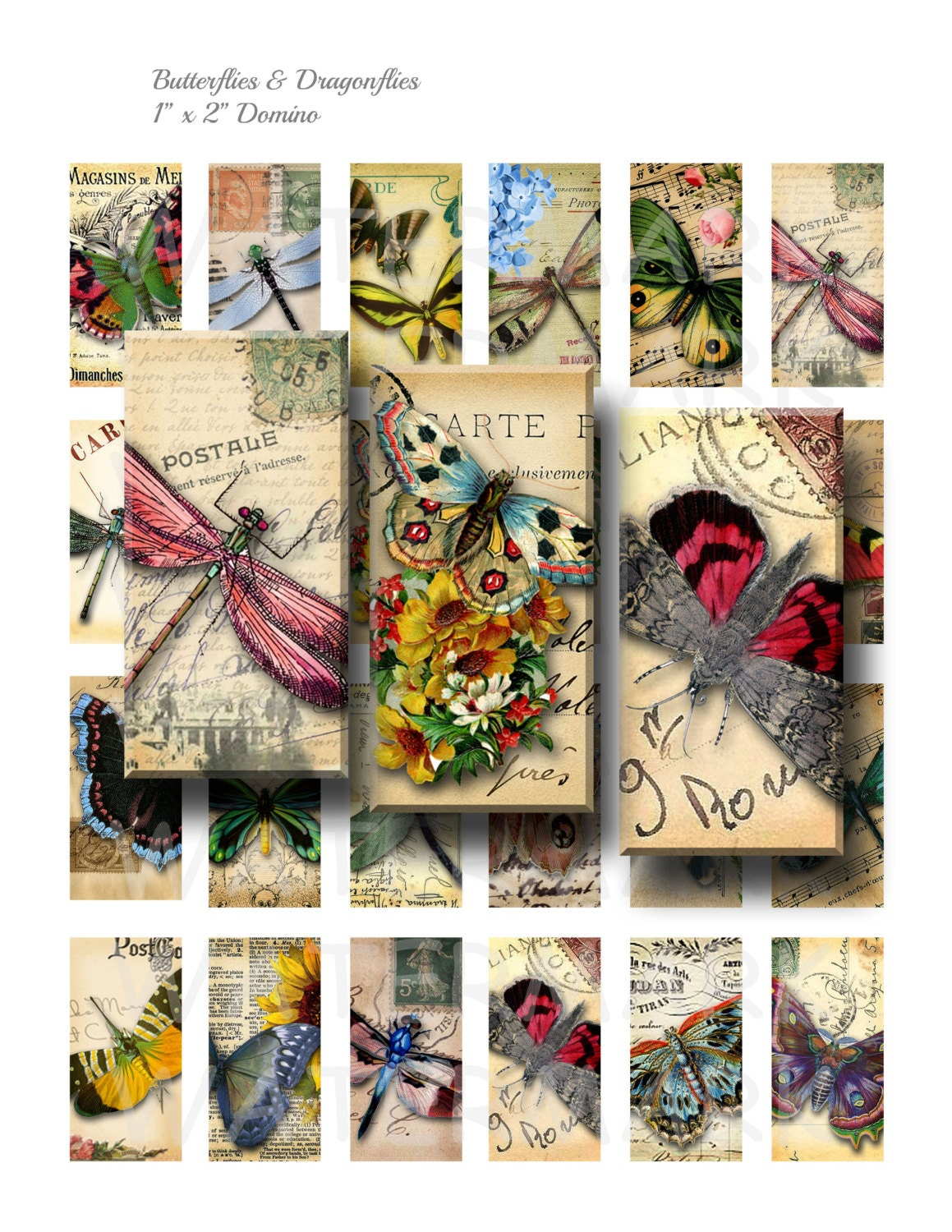 This is a picture of Zany Digital Collage Sheets