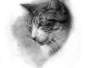 9x12in custom pet portrait created by me in graphite.