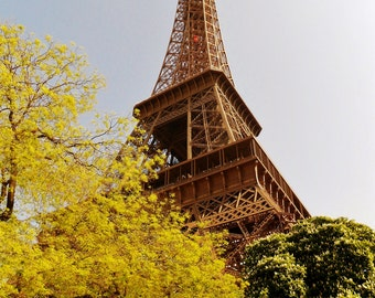 Eiffel Tower in Autumn - Paris, France - 8x10 Photo Industrial Art Picture