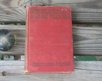 Antique 1929 Roy Blakeley's Go-As-You-Please Hike by Percy Keese Fitzhugh Grosser & Dunlap whimsical humor NJ boyhood Americana retro book