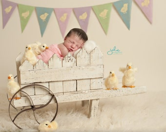 Chick Easter Photography Prop Burlap Banner