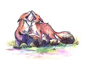 Fox Print - 11x14 Size - From You To Me - Adorable Fox Art
