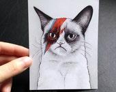 Grumpy Cat Card, David Bowie, Blank on Back, Mini Print, Funny Geek Meme