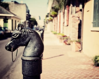new orleans photography hitching horse head french quarter art beige home decor wall art