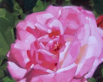 PINK SUNSHINE original oil floral of pink rose