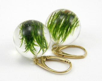 Green Moss Earrings, Gold Plated Silver, Resin Earrings, Ball Earrings, Resin Jewelry, Moss Jewellery, Moss