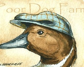 ACEO signed PRINT - Pintail Duck in a hat