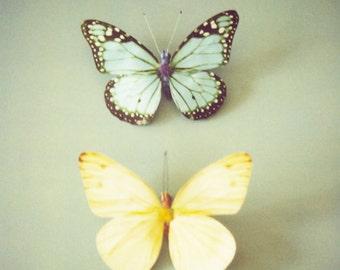 Butterfly decor, butterfly photo, pastel yellow, green, blue, butterfly wall art, nursery decor, nursery art, kids wall art - A Pair