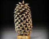 Giant Pine Cone (CP26)