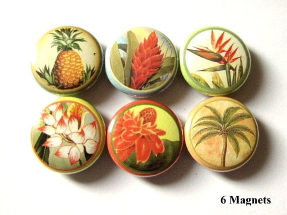 Hawaiian Flower fridge MAGNETS Set of Six 1 inch Hawaii floral tropical palm tree pineapple paradise magnet hawaii stocking stuffer flair