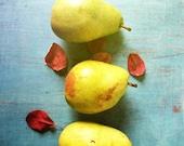 Three Pears . kitchen wall art . fruit . modern food photography . aqua blue yellow green . simple . cottage art . farmhouse chic