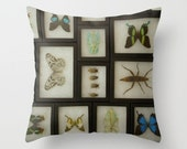 Natural History Pillow Cover Butterflies Insects Morpho Entomology Nature Pillow Natural History Pillow