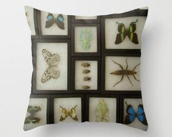 Natural History Pillow Cover Butterflies Insects Morpho Entomology Nature Pillow Natural History Pillow