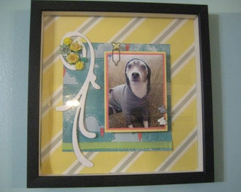 Custom Collage Framing for Pics of You or Your Pet: Small, Made to Order, 50% goes to the current selected animal charity