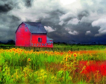 The red barn art, 16x20, art, photography, nature, Sunflowers, Signore, Barn, Farm house chic, countryside, rural #farms #red barns