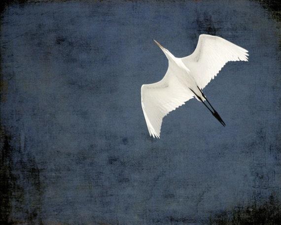 50% OFF SALE: In Flight (Blue) Digital Art Print