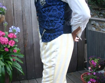 Gold and White Stripe Button Flap Front  Steampunk Pants