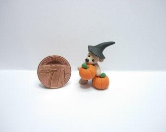 1/12th scale dolls house miniature teddy bear with pumpkins