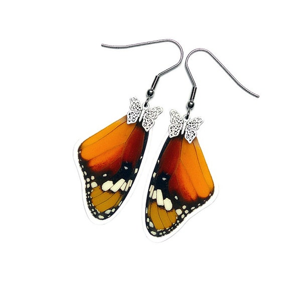 Real Butterfly Wing Earrings (Danaus Chrysippus Forewing - E200)