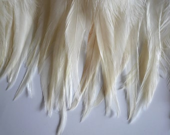 BELLA  COQUE SADDLE / Ture Ivory, Corn Silk  /  238