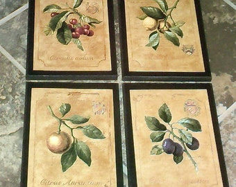 Fruit 4 Kitchen Wall Decor Signs plaques set colorful yellow country kitchen pictures, oranges, lemons, plums, cherries