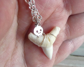 Shark Tooth and Silver Skull Necklace Goth Necklace Tooth Necklace